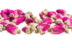 Boutons de rose secs Photographie stock