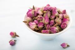 Boutons de rose secs Image stock