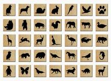 Boutons en bois avec des animaux Photos stock