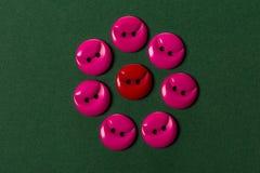 Boutons rouges et roses sur le vert Images stock