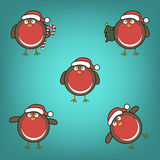 Bouvreuils dans des chapeaux de Noël Images libres de droits