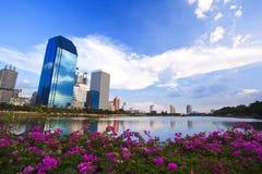 Bouw landschap en bloem voorachtergrond Stock Afbeeldingen