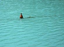Bouy в воде Стоковые Изображения