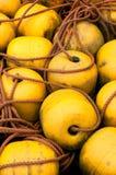 Bouy jaune Photos stock