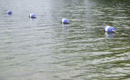 Bouys befestigte zusammen mit einem Seil auf Wasser Lizenzfreie Stockbilder