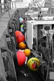 Bouys Colourful in porto Fotografia Stock