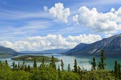 Bove wyspa i Tagish jezioro Zdjęcie Stock