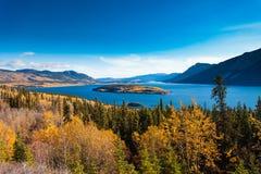 Bove wyspa w Tagish jeziorze blisko Carcross YT Kanada Obraz Stock