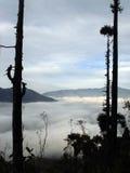 Boven de wolken in Darjeeling Royalty-vrije Stock Afbeelding
