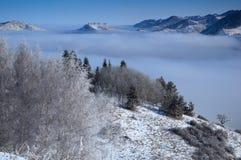 Boven wolken in bergen Royalty-vrije Stock Afbeelding
