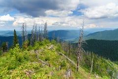 Bovenkant van de Berg en de mening van Kokuya over Teletskoye-Meer Altairepubliek Rusland Royalty-vrije Stock Afbeeldingen