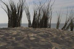 Bovenkant van de Noordzee van de zandheuvel stock fotografie