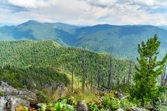 Bovenkant van Kokuya-Berg Altairepubliek Rusland Stock Fotografie
