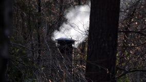 Bovenkant van schoorsteen die rook vrijgeven van bos stock video