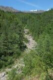 Bovenloop van Serebryanka-Rivier in Noordelijke Ural-Bergen, Russi royalty-vrije stock foto's