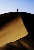Bovenop een sanddune Stock Fotografie