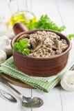 bovete plocka svamp porridge Royaltyfria Foton