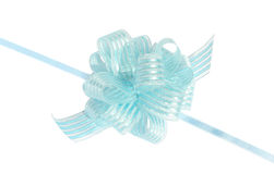 Bow. Blue bow on a white background Stock Image