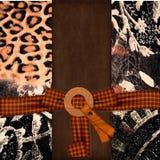 bow bleknade bundna imprintfläckar Royaltyfri Fotografi