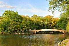 Bow Bridge above The Pond in Central Park. A beautiful pond in Central Park in the middle of New York City Royalty Free Stock Photos
