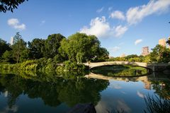Bow bridge and big trees reflect in calming lake at Central Park. Bow bridge and big trees reflect in calming lake with cloudy sky at Central Park Stock Image