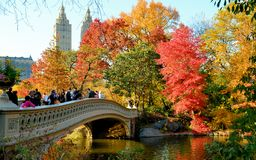 Bow Bridge in Fall Stock Image