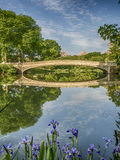 Bow bridge in spring. The Bow Bridge is a cast iron bridge located in Central Park, New York City, crossing over The Lake stock image