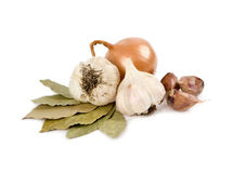Bow, garlic and laurel sheet on a white background Stock Image