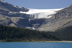 Bow glacier with glacier falls and bow lake Stock Images