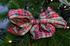 Bow hanging on a fir Royalty Free Stock Images