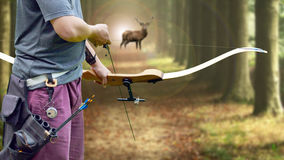 A bow hunter aiming at a White tail buck against Royalty Free Stock Photo