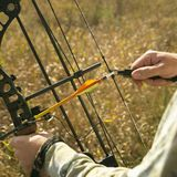 Bow hunter hands on bow. Bow hunter hands holding compound bow in field Royalty Free Stock Photo