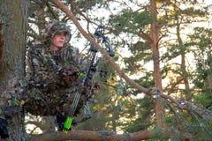 Bow Hunter In Tree Stock Photos