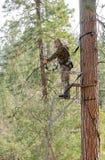 Bow hunter Stock Photos