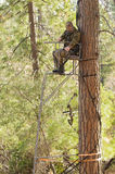 Bow hunter Royalty Free Stock Photos
