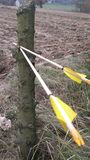 Bow hunting Royalty Free Stock Photo