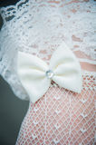 Bow. Jewelery for the bride, bow Stock Images