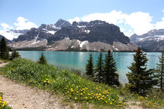 Bow Lake, Banff Stock Image