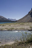 Bow lake and glacial water in the canadian rockies Royalty Free Stock Image
