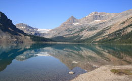 Bow Lake and Glacier Royalty Free Stock Photos