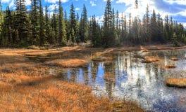 Bow Lake Royalty Free Stock Photos