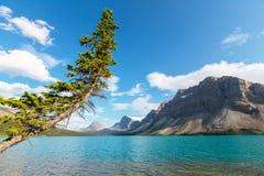 Bow lake Royalty Free Stock Photo