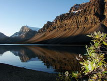 Bow Lake Morning Shadows Stock Images