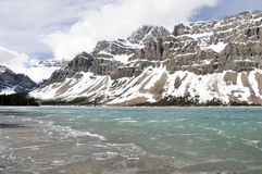 Bow Lake, Rocky Mountains (Canada). Bow Lake in Spring, Rocky Mountains (Canada royalty free stock photo