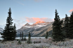 Bow Lake sunrise, Banff National Park Royalty Free Stock Images