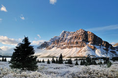 Bow Lake sunrise, Banff National Park Stock Photography