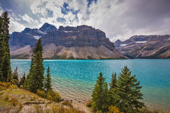 Bow Lake, surrounded by pine trees Stock Photo