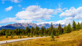 The Bow Mountain Range in the Fall in Banff National Park. The Bow Mountain Range in autumn seen from the Bow Valley Parkway in the Fall in Banff National Park Stock Photography