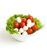 Bow with mozzarella, tomatoes and salad Royalty Free Stock Images