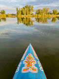 Bow of racing stand up paddleboard by Starboard. Fort Collins, CO, USA - August 23, 2017: Bow of racing stand up paddleboard by Starboard with the tiki  logo and Royalty Free Stock Photos
